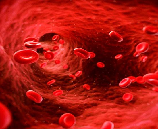 Enfermedades de la Microcirculación